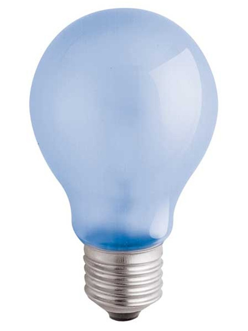 120V 100w Natural Spectrum A21 Light Bulb