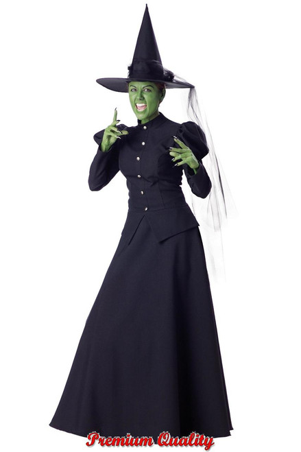 Womenu0027s Witch Costume IC1022  sc 1 st  Halloween Express & Plus Size Witch and Devil Costumes