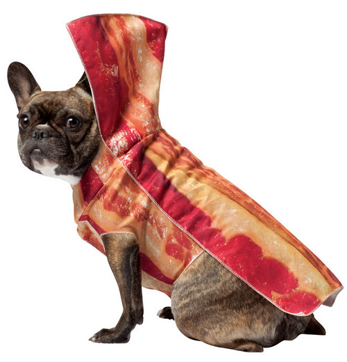 Bacon Dog Costume  sc 1 st  Halloween Express : angry bird dog costume  - Germanpascual.Com