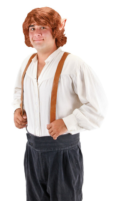 Bilbo Baggins Wig with Ears  sc 1 st  Halloween Express & Lord of the Rings Costumes and Accessories