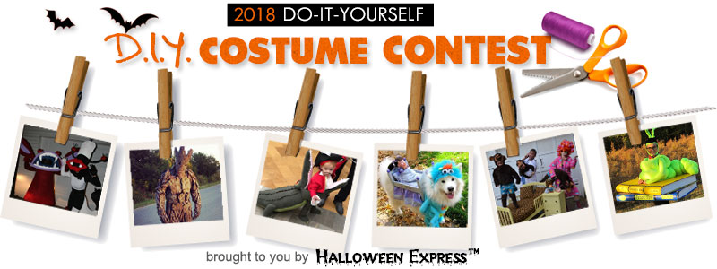 2018 DIY Costume Contest