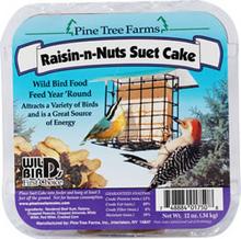 Raisin-N-Nuts Suet Cake