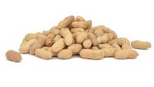 Raw In-shell Peanuts