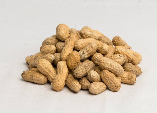 Roasted In-shell Peanuts