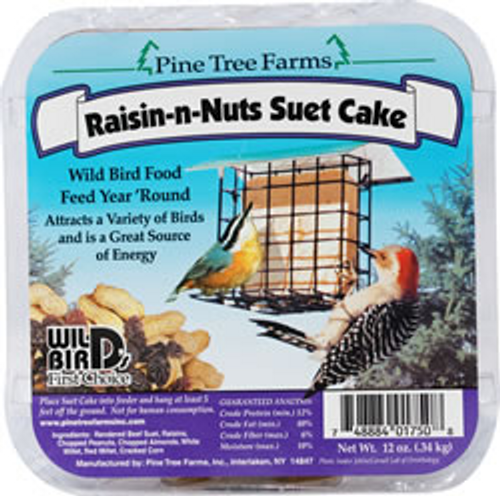 Raisin-N-Nuts Suet Cake