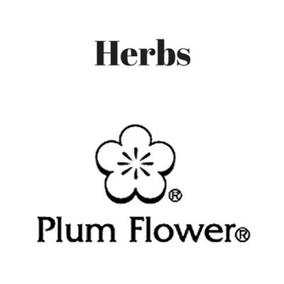 Plum Flower