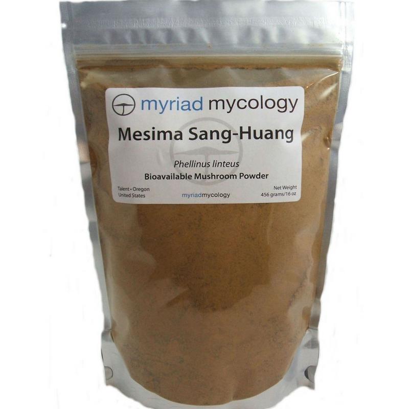 Mesima Mushrooms Sang Huang Myriad Mycology Mushroom Powder 1 lb
