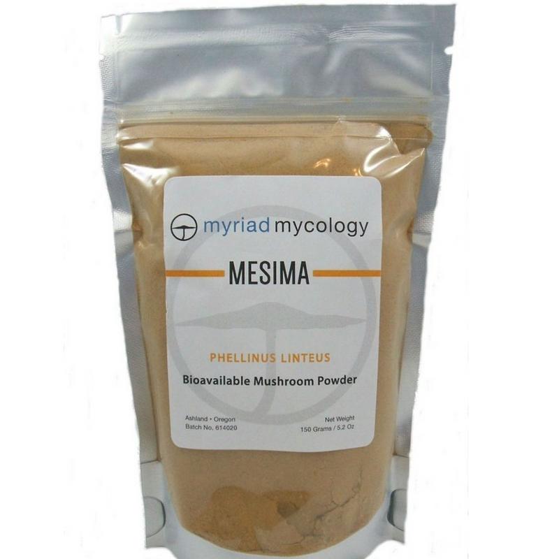 Mesima Sang Huang Myriad Mycology Mushroom Powder 5.2 oz