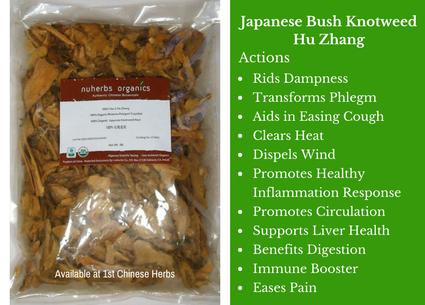 hu zhang, japanese bushy knotweed, nuherbs, traditional bulk herbs, bulk tea, bulk herbs, teas, medicinal bulk herbs
