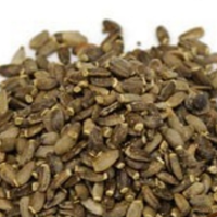 milk-thistle-seed-200.png