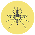 sandfly-icon.png