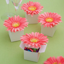 Perfectly Plain Collection Classy Pink Gerbera Daisy Adorned Box Favours