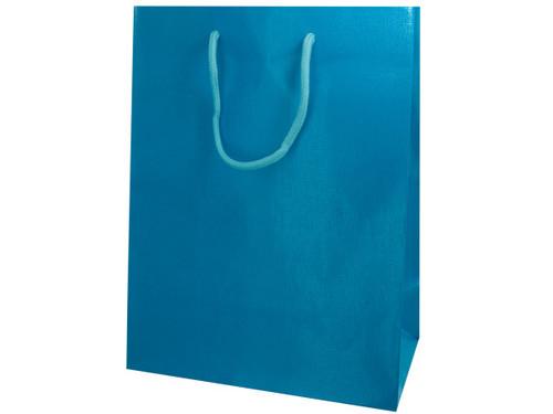 Aqua Colored Gift Bag