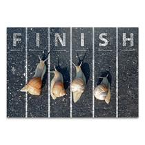 Snail At Finish Line Wall Art Print