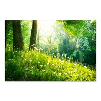 Spring Tranquil Nature Art Print