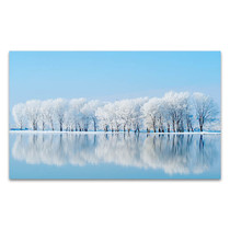 Winter Reflections Canvas Art Print
