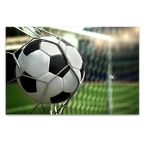 Football on Net Wall Art Print