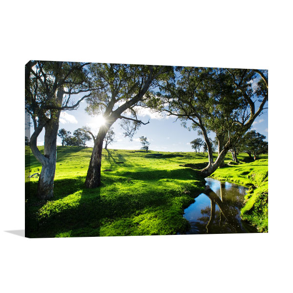 Adelaide Hills Wall Art Print Landscape Artwork Photo