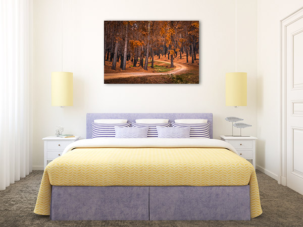 Adelaide Hills Wall Print Forest Autumn Artwork Canvas