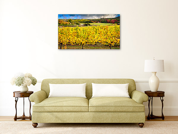Adelaide Hills Wall Print Grapevine Autumn Photo Art