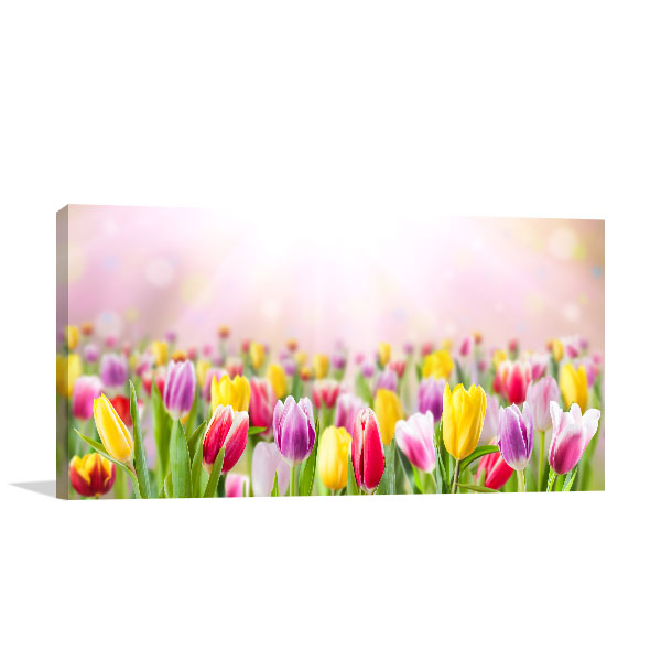 Assorted Tulips Photo Artwork