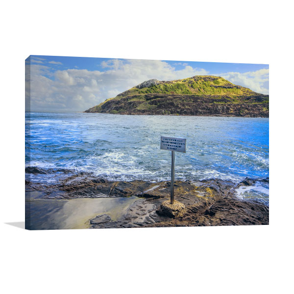 Australia's Rocky Wall Print Headland Canvas Prints