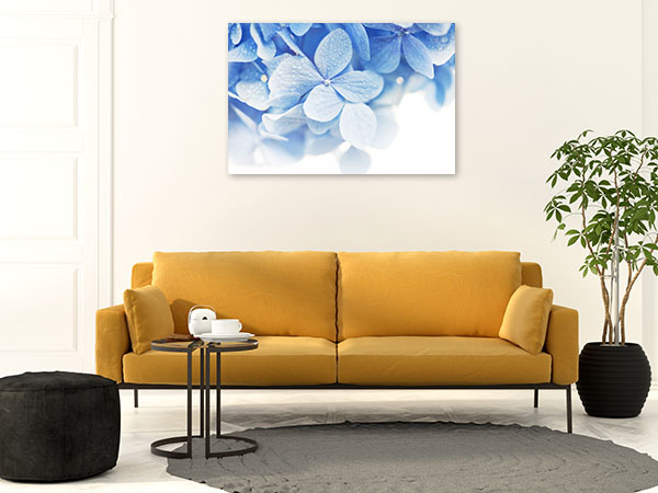 Baby Blue Hydrangea Print Art Canvas