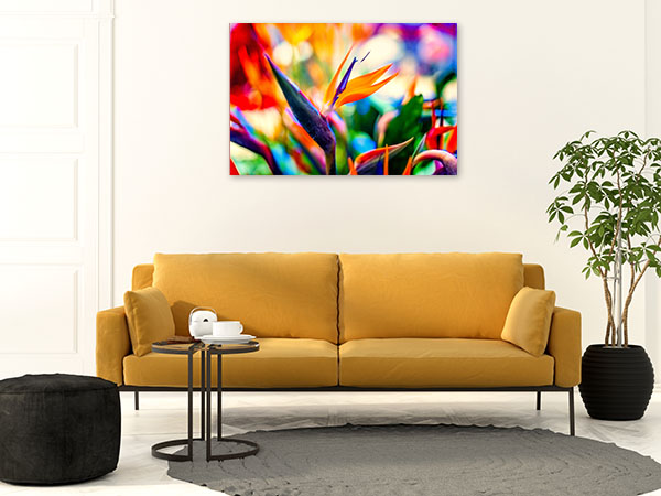 Birds of Paradise Closeup Wall Art Photo Print