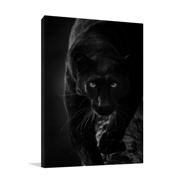 Black Panther Print Wall Art