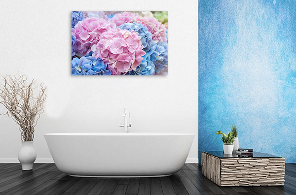 Blue and Pink Hydrangea Picture Artwork