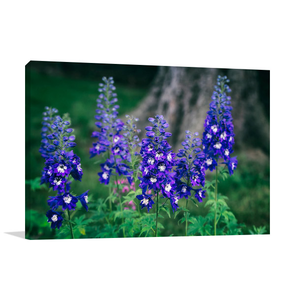 Blue and White Delphinium Wall Artwork