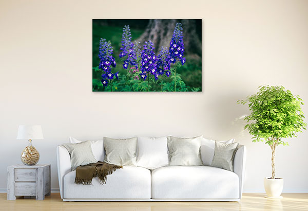 Blue and White Delphinium Picture Art