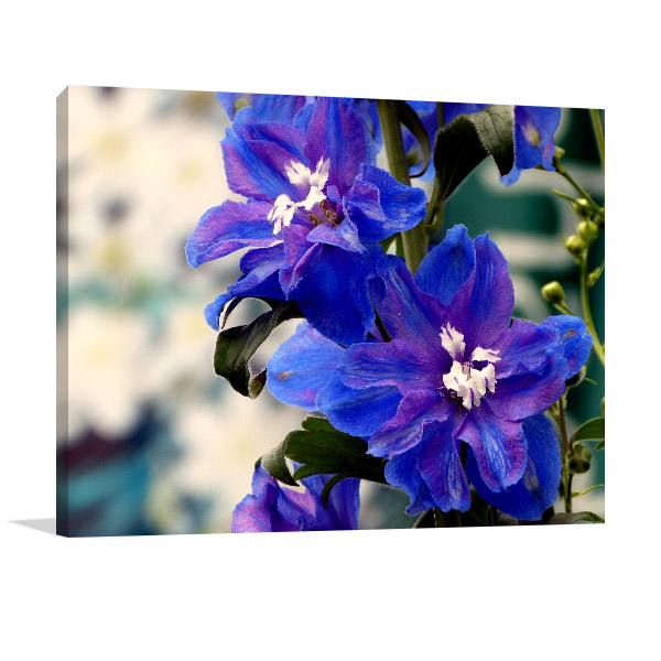 Blue Delphinium Wall Picture