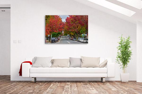 Blue Mountains Art Print Blackheath Autumn Trees Wall Canvas