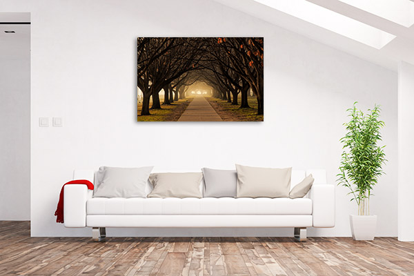 Canberra Art Print Winter Trees Artwork