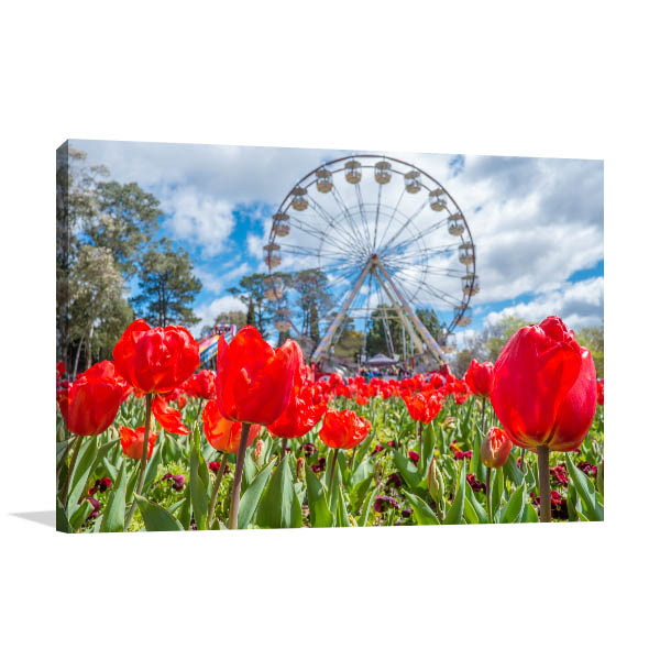 Canberra Floriade Canvas Print Red Tulips Picture Artwork