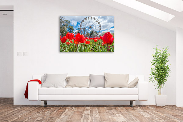 Canberra Floriade Canvas Print Red Tulips Wall Picture