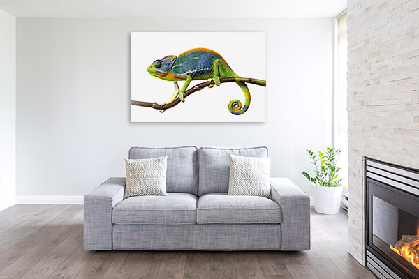 Chameleon in Tree Branch Print Photo Art