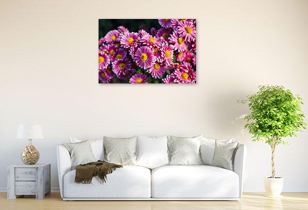 Chrysanthemum Picture Print Decor