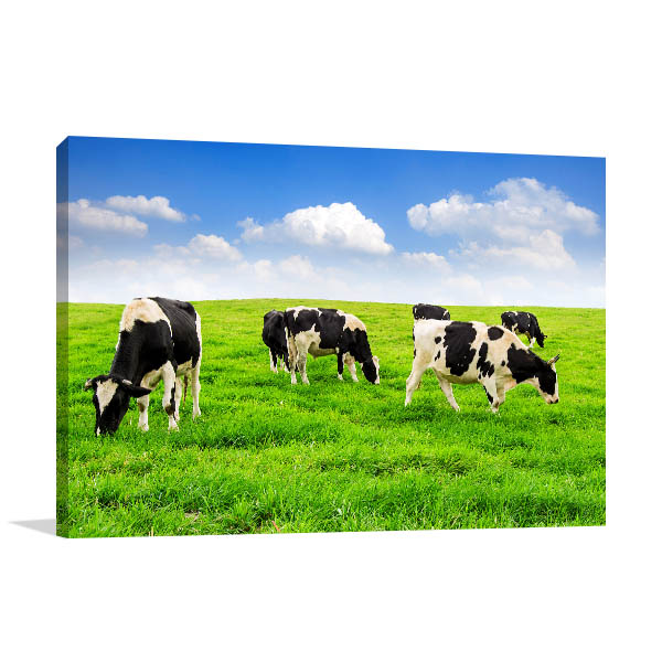 Cows in the Field Picture Artwork