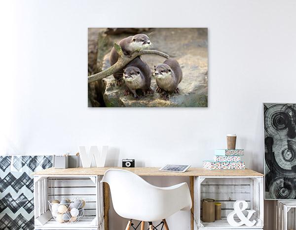 Cute Otters Print Art Canvas