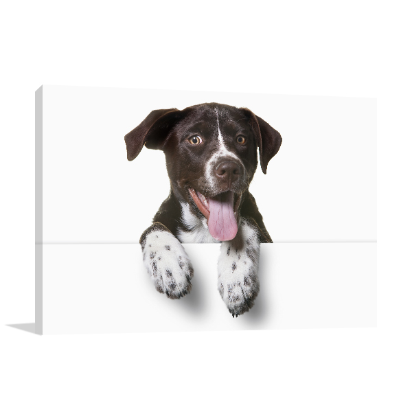 Dog with Tongue Out Photo Print