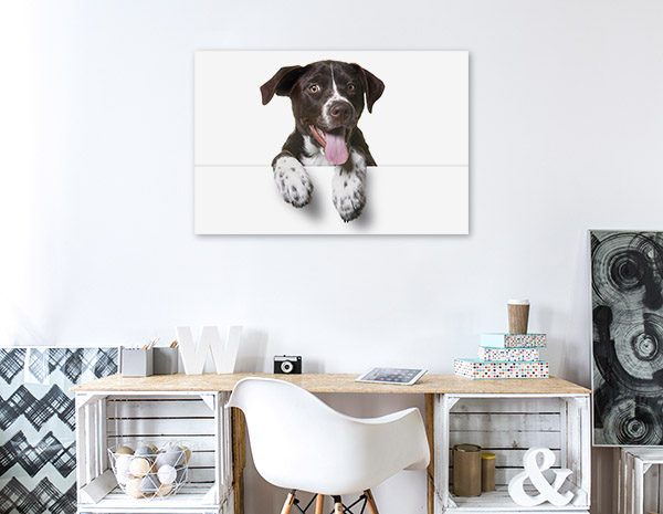 Dog with Tongue Out Print Photo
