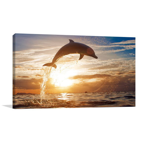 Dolphin Surfacing Sunset Picture Canvas