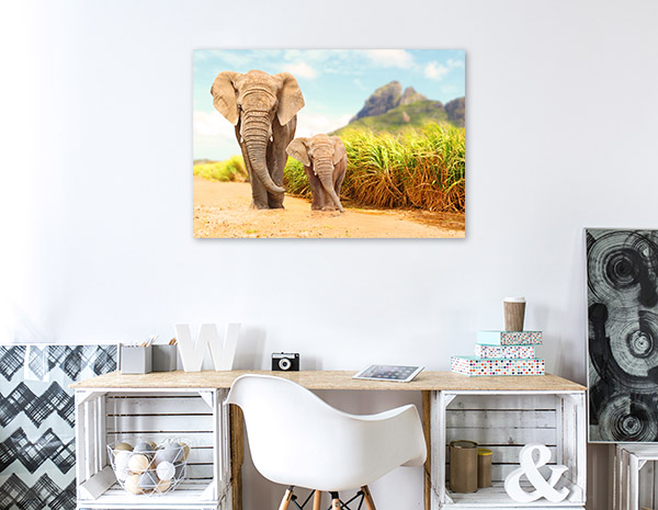 Elephant and Calf Prints Canvas