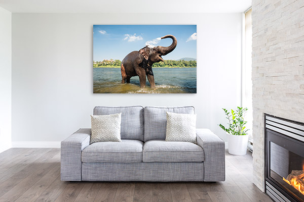 Elephant Bathing Artwork
