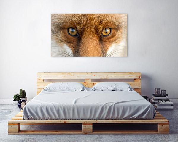 Fox Eyes Canvas Prints