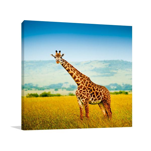 Giraffe in Africa Picture Wall
