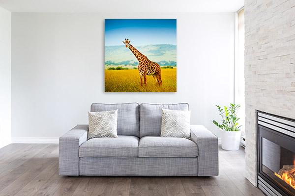 Giraffe in Africa Canvas Artwork