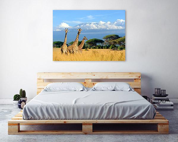 Giraffes in Savannah Art Picture